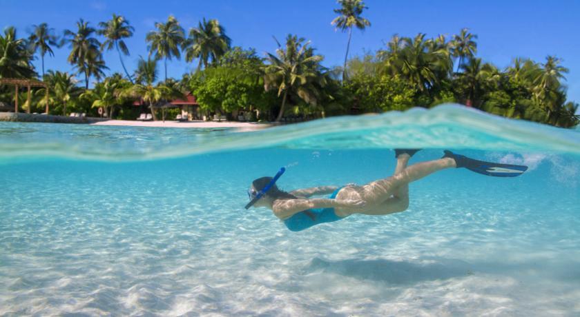 HOT SPO!!! Только отель! Мальдивы! Bandos Island Resort & SPA 4* от 248 тыс тг!